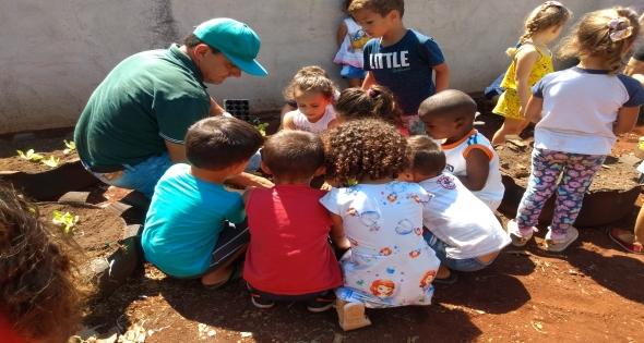 Crianças Maternal Erina Sidor  ajudam no plantio de verduras