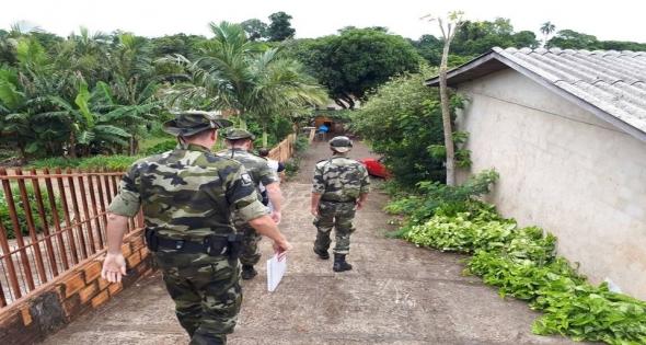 Polícia Ambiental localiza criadores de Galos