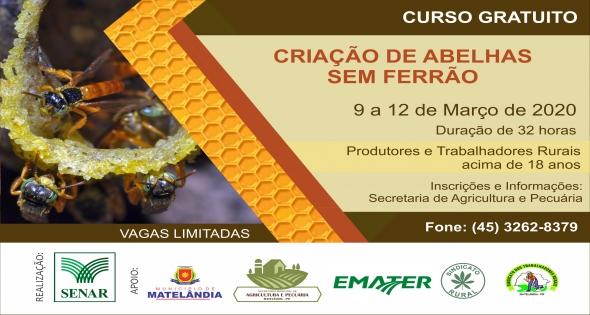 Novo curso é lançado na área de apicultura