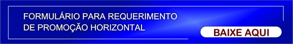Formulário Requerimento de Promoção Horizontal